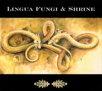Lingua Fungi & Shrine - Strange Growths / Wander